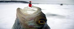 Как ловить на мормышку зимой