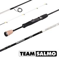 Спиннинг Team Salmo Tioga 7.3/l