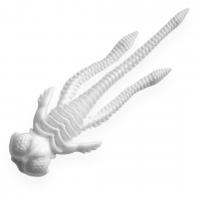 Слаги съедобные Soorex LADY 55мм Белый