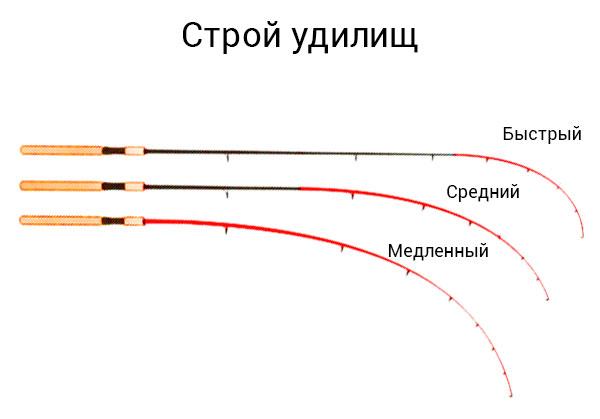 Как определить строй фидера